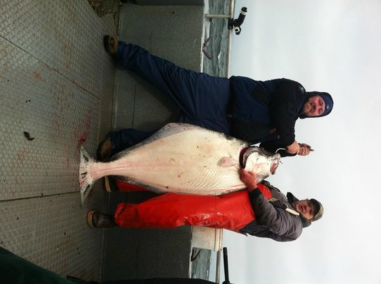 Bob's Cabin & Guide Service: 100 LB Halibut caught May 5, 2012