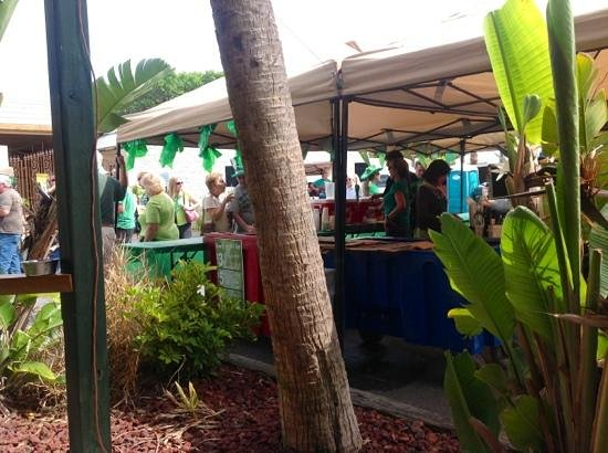 Clancy's Cantina: the expanded St. Patricks Day Porch with a band & selling Guiness plus Green Beer