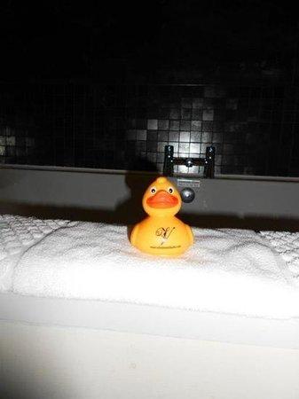Velvet:                                     complimentary duck <3