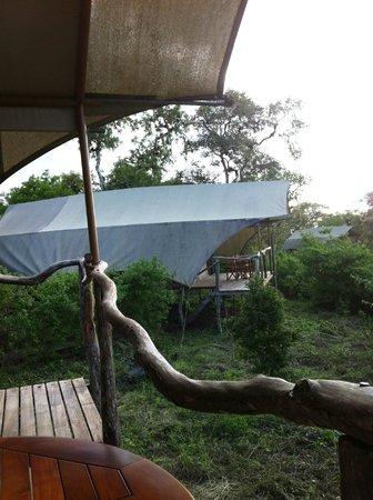 Galapagos Safari Camp: tent view
