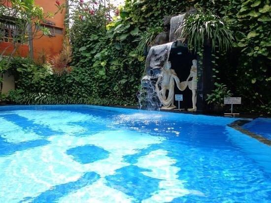 Green Garden Hotel: สระว่ายน้ำ