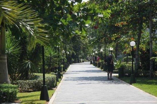 Hotel Riu Playacar : Allée centrale