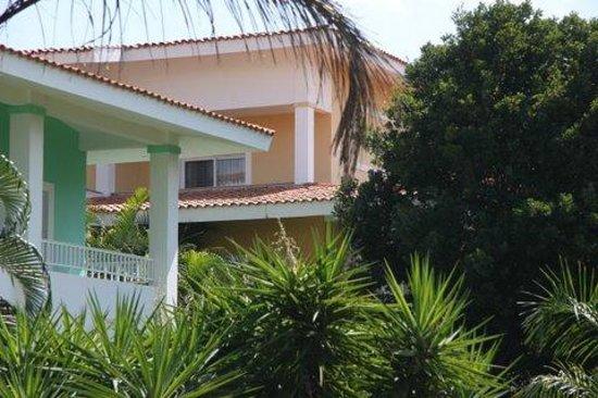 Hotel Riu Playacar : Vue de la chambre