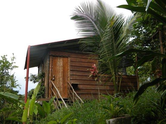 La Loma Jungle Lodge and Chocolate Farm: my front door