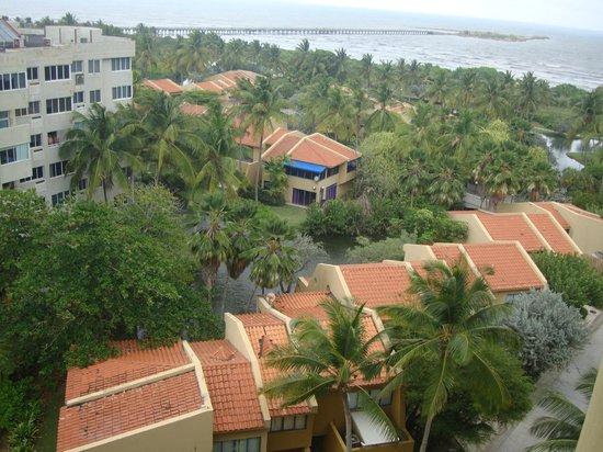 Caribbean Suites:                                     vista desde la 2da habitación