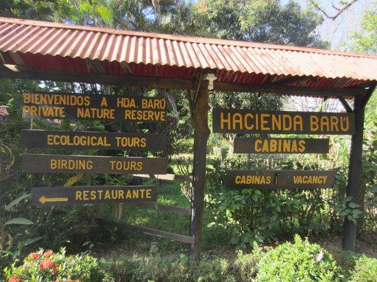 Hacienda Baru Lodge: Main area