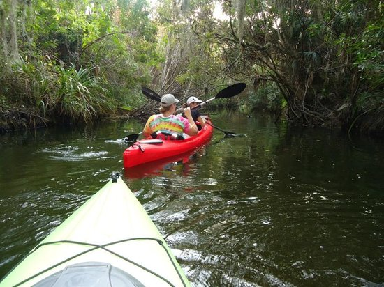Karen's Kayaks :                   Crane Creek, Downtown Melbourne - great protected paddle for windy daysndy