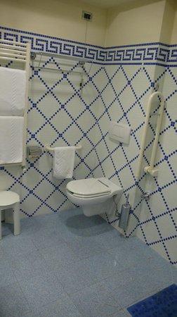 Hotel Ilaria: Nel bagno per handicappati non c'è bidet nè box doccia