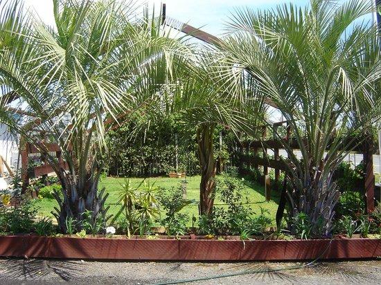Waipu Clansman Motel: Gazebo Garden