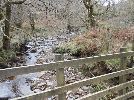 Torrisdale Castle : lots of streams and rivers to explore