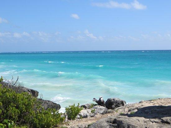 Grand Bahia Principe Tulum: Tulum Beach by Tulum Ruins - MUST SEE!!