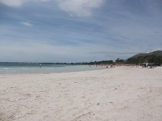 Club MAC Alcudia: beach