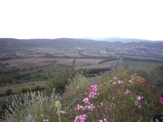 Il Cantico della Natura: View - della natura is right!