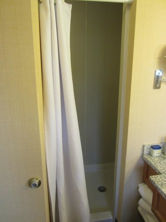 Green Mountain Suites Hotel: Small shower - no tub