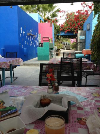 The Hotelito: outdoor dining