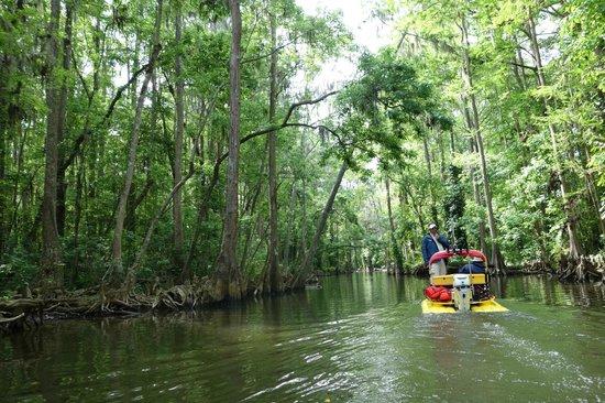 CraigCat Tours: Cruising down the Dora Canal