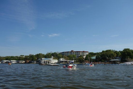 CraigCat Tours: Mt Dora from the lake
