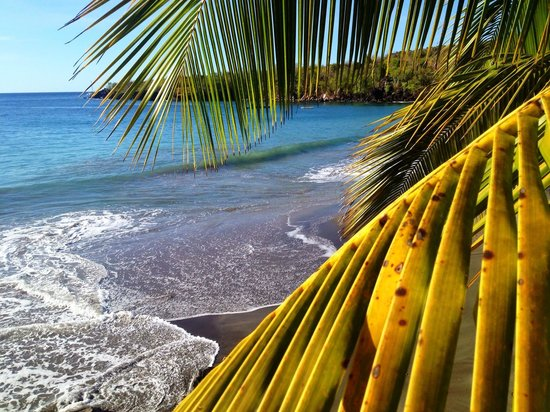 Ti Kaye Resort & Spa: Nestled in a cove a true Caribbean gem