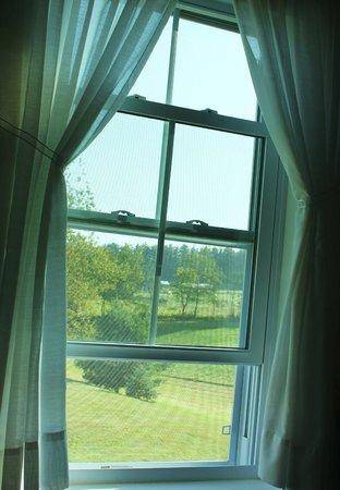 Kinsman Lodge: Good Country Morning!