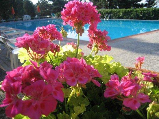 La Fontaccia: piscina