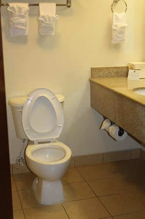 Baymont Inn & Suites Columbia Fort Jackson: Standard 2-Bdrm Bathroom