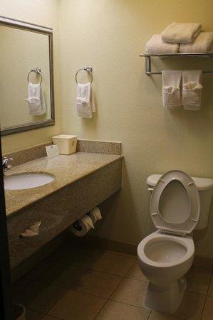 Baymont Inn & Suites Columbia Fort Jackson: Bathroom Suite