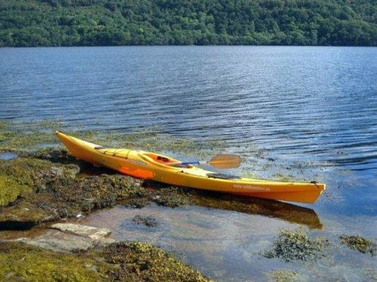 Luss, UK: Sea Kayaking Loch Goil