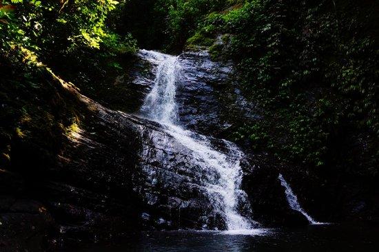 Rio Magnolia Nature Lodge: View