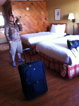 Timbers Lodge:                   Room.  Cabin feel, comfy beds, nice linens - Pet Friendly!
