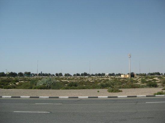 Premier Inn Dubai Silicon Oasis Hotel:                   view