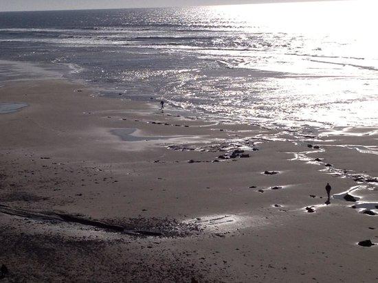كومفورت إن نيوبورت:                   Nye Beach                 