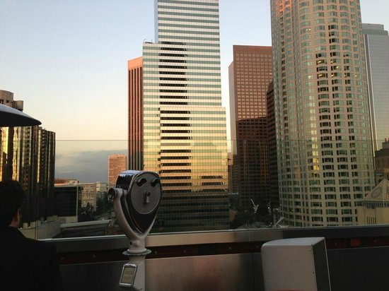 The Standard Downtown:                   rooftop                 