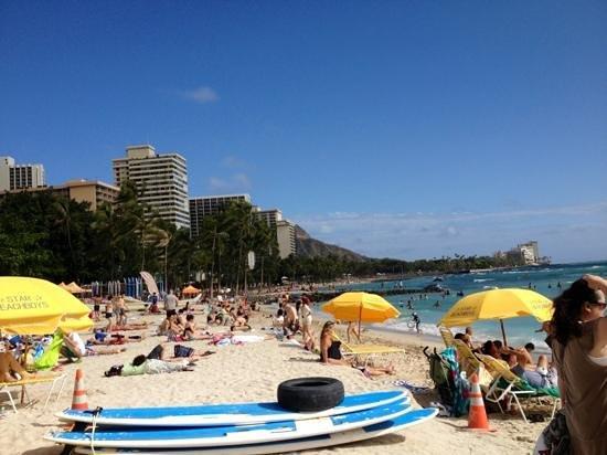 Hyatt Place Waikiki Beach:                   waikiki beach