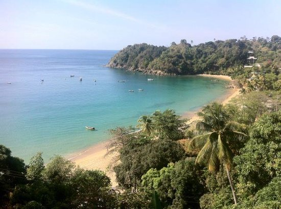 Castara Retreats:                   This is the view from the Rainforest suite where we stayed.