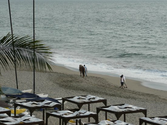 Crown Paradise Golden Resort Puerto Vallarta:                   evenings you often saw horses on the beach