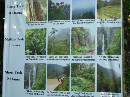 Sekumpul Waterfalls:                   What and where to go.