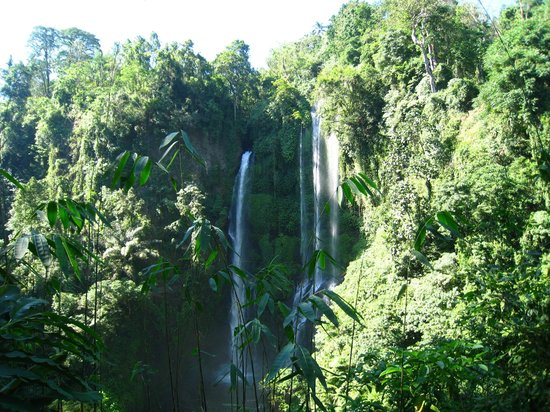 Singaraja, Indonesië: The ultimate falls!
