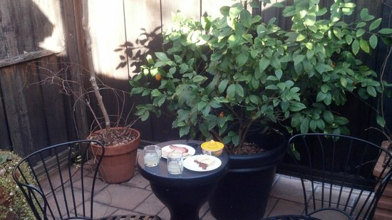 Mount View Hotel & Spa:                   Foliage on the patio