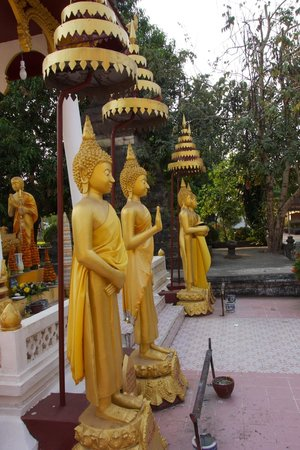 Wat Si Saket: buddhas with sharp noses