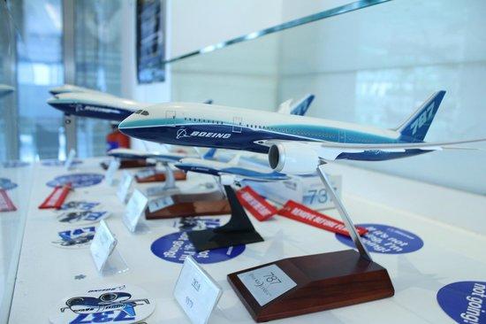 Flight Experience Flight Simulator: Boeing Store