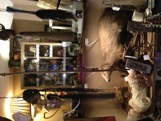 Lady Kentmores Antiques : one small corner of the shop