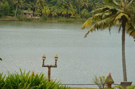 Fragrant Nature Backwater Resort & Ayurveda Spa: view from room