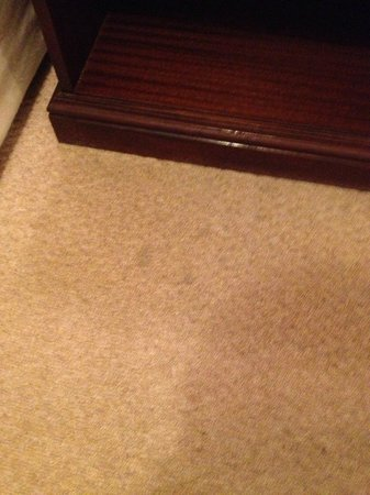 Hampshire Hotel : stained carpet