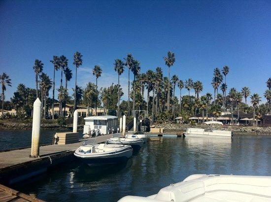 Paradise Point Resort & Spa: Rental boats in marina