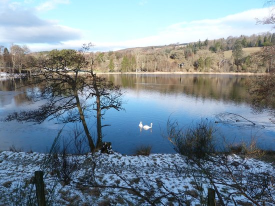 Loch Monzievaird Self Catering Lodges: On walk around the loch