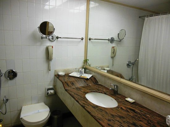 Dolphin Hotel : Bathroom