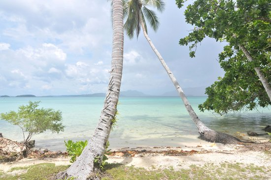 Uepi Island Resort: View from beachfront bungalow 3