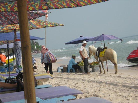 Baan Paan Hua Hin: paardrijden op het strand