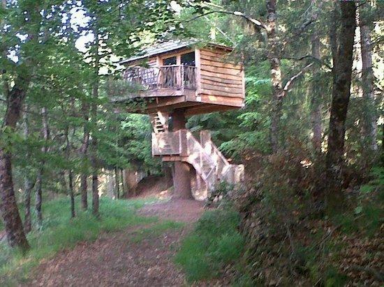 Cabanes als Arbres : La cabaña que nosotros estuvimos!
