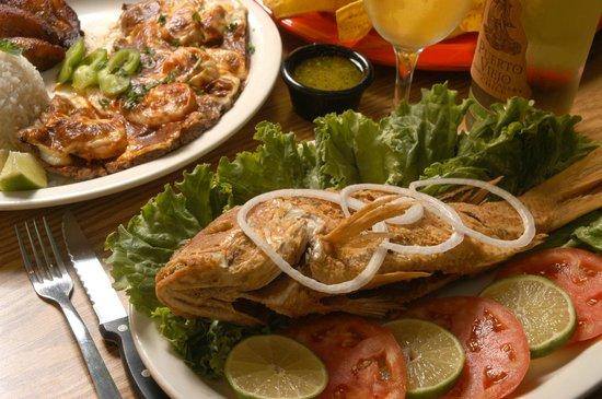 El Tropico Cuban Cuisine: Buen pescado.